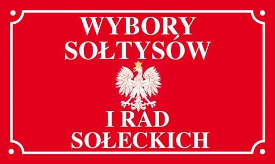 wybory_soltysow.jpg