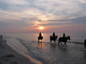 Zachód słońca na plaży w Białogórze [300x225]