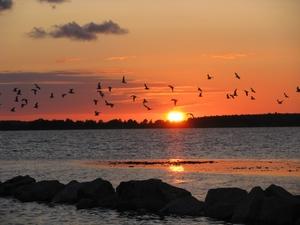 Zachód słońca na plaży w Lubkowie [300x225]