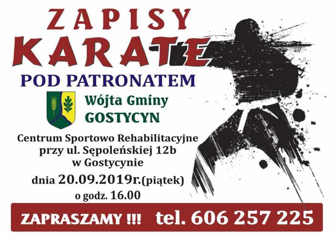 karate_gostycyn2019.jpg