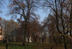 Park podworski w Kołacinku - II poł. XIX w.