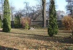 Cmentarz przykościelny, grzebalny mariawicki -założony 1912 r. w Woli Cyrusowej