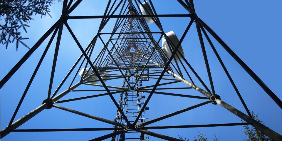foto: www.dobreprogramy.pl (link otworzy duże zdjęcie)