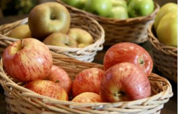 jabłka, zdjęcie poglądowe