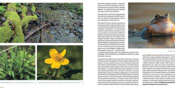 Album przyrodniczo-edukacyjny Gmina Wleń w Dolinie Bobru (link otworzy duże zdjęcie)
