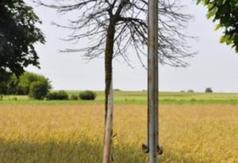 Krzyż przy dawnej bramie wjazdowej do obozu w Boguszach
