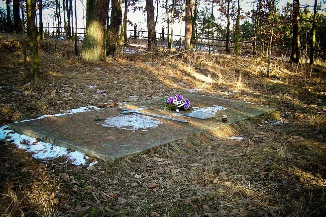 cmentarz_z_i_wojny_swiatowej__1jpg [655x437]