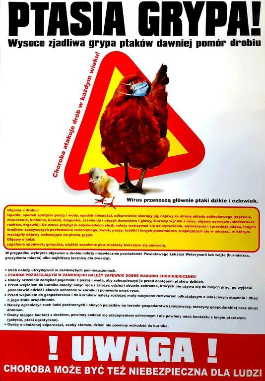 Plakat informacyjny o ptasiej grypie (link otworzy duże zdjęcie)