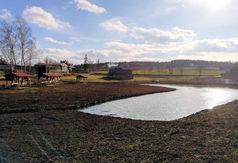 Staw wiejski w Przytarni (link otworzy duże zdjęcie)