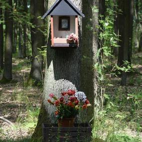 Kapliczka na drzewie w lesie przy drodze z Korytowa do Radziejowic