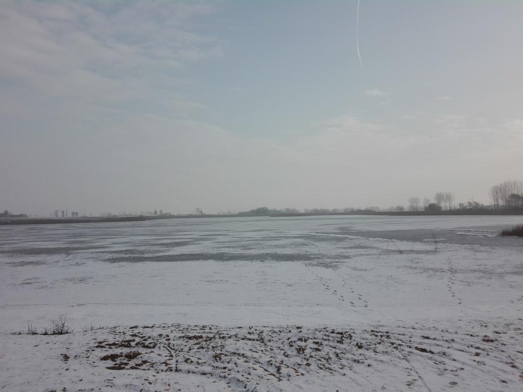 widok jeziora przed rozpoczęciem prac