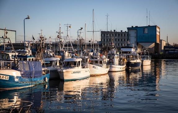 Łodzie zacumowane przy nabrzeżu portu