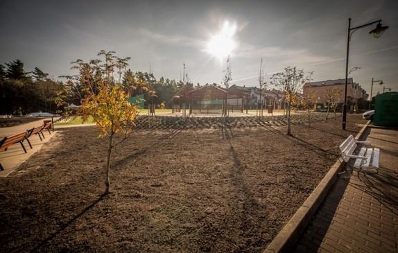 Tereny zielone i drzewka posadzone wokół skweru
