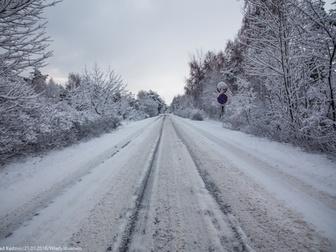 Zaśnieżona droga wzdłuż drzew w Gminie Władysławowo.