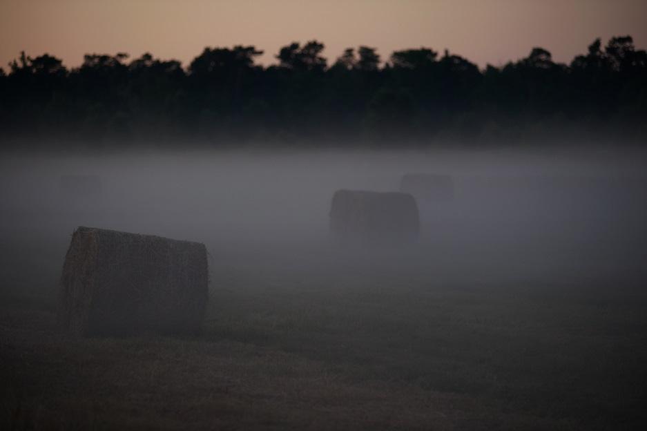 Ostrowo (fot. od Sołtysa) (link otworzy duże zdjęcie)