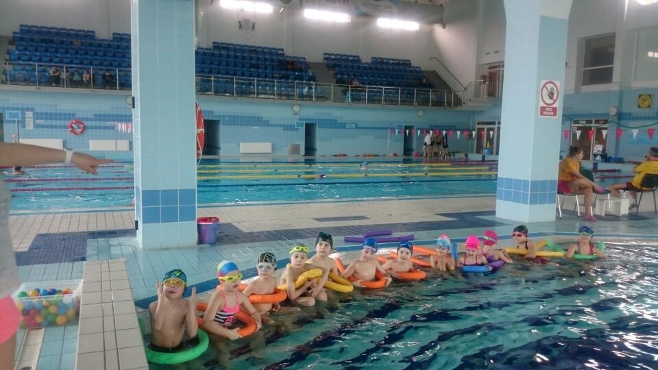 Pierwsze lekcje pływania mają już za sobą (link otworzy duże zdjęcie)