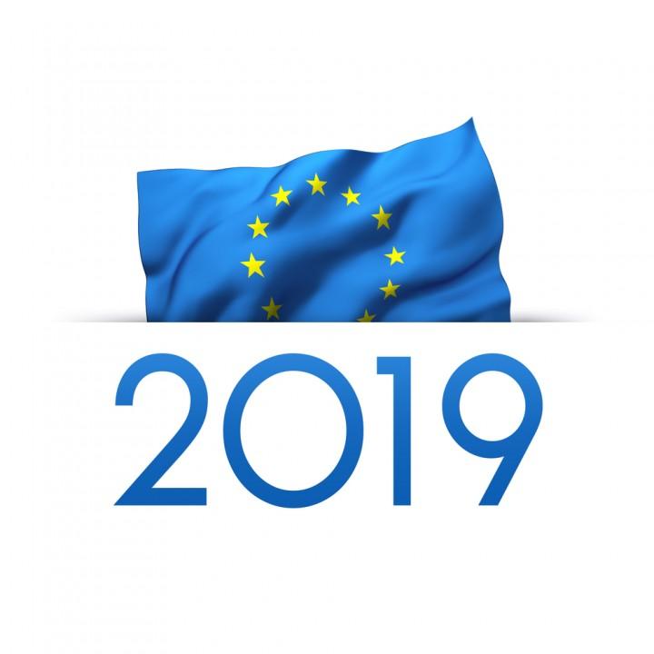 Wybory do Europarlamentu 2019 (link otworzy duże zdjęcie)