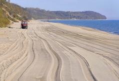 Oczyszczona plaża w Chłapowie