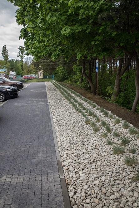 Kruszywo z kory gnejsowej przy ul. Hryniewieckiego (link otworzy duże zdjęcie)
