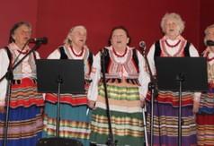 Na zdjęciu zespół Blinowianki.