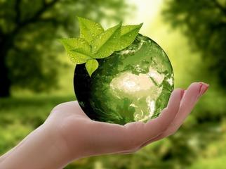 Powiatowy Program Edukacji Ekologicznej.