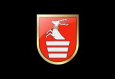 logotyp -herb powiatu kraśnickiego