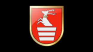 Logo Powiatu Kraśnickiego (link otworzy duże zdjęcie)