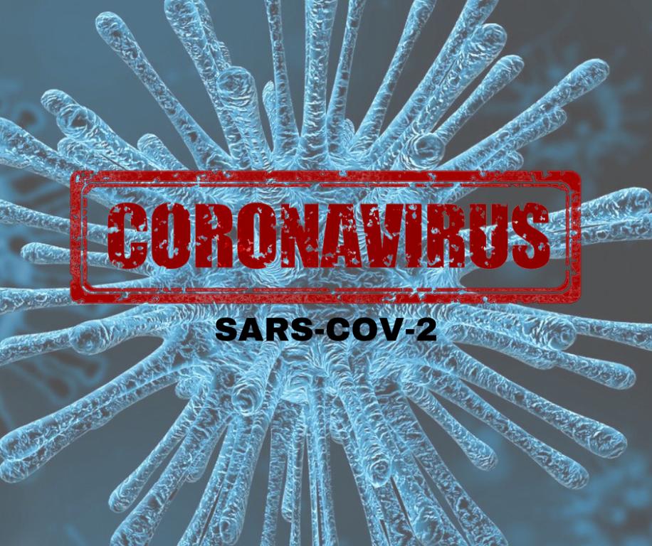 Grafika coronavirus (link otworzy duże zdjęcie)