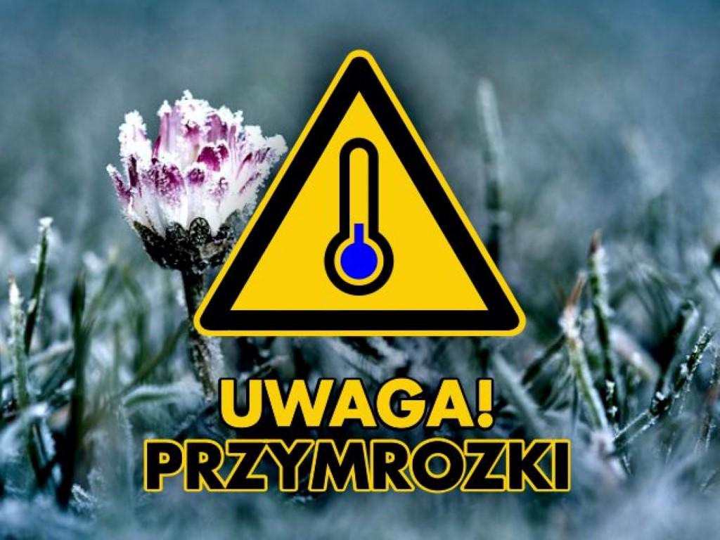 Grafika ostrzeżenie o przymrozkach (link otworzy duże zdjęcie)