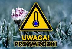 Grafika ostrzeżenie o przymrozkach