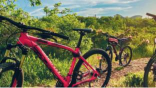 Grafika rowery