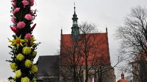 Pierwszy dzień astronomicznej wiosny (20.03) płatał od rana figla, ale kapryśna pogoda nie odstraszy�