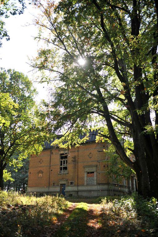 Pałac w Rzuchowie