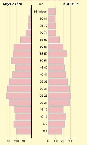piramida_wiekujpg [300x500]